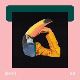 Thinking Toekan | collage | 20x20 |  EB