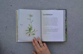 'Wildplukken: de Buitenkeuken' door Leoniek Bontje en Yvet Noordermeer