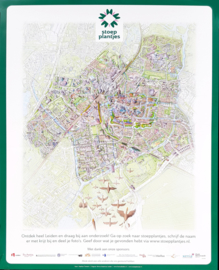 Stoepplantjes Poster- Landkaart Leiden Stephan Timmers