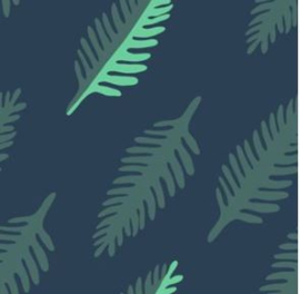 Kleedje leaf