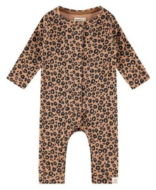 Boxpakje Babyface (leopard)