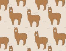 T- shirt alpaca