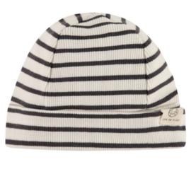 Muts Babyface (stripes) Antraciet