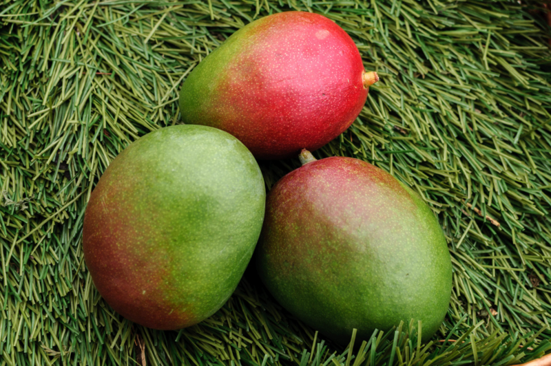 Mango Ready To Eat