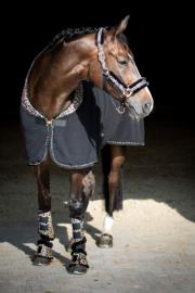 Harry's Horse Fleecedeken Cats
