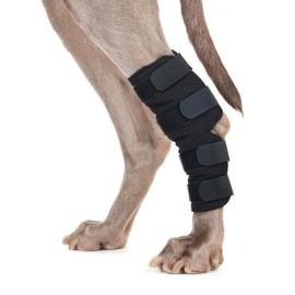 Back on Track Honden Hakbeschermer