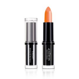 Color Intense Lipstick Caravan