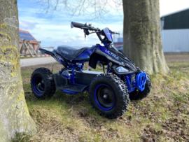 Elektrische mini Quad 800W Blauw