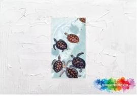 Turtles picture sticker