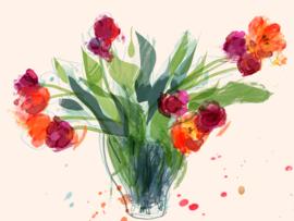tulpen breed