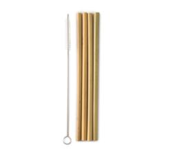 4 Bamboe rietjes met borstel