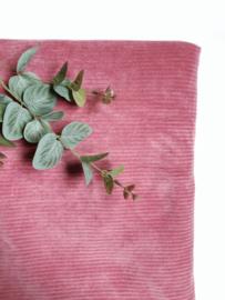 Ribfluweel deken roze