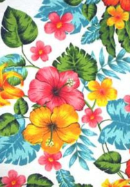 Canvas tropical