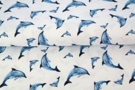 Hydrofiel dolphine