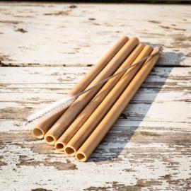 Set 5 bamboe rietjes + rietjesborstel