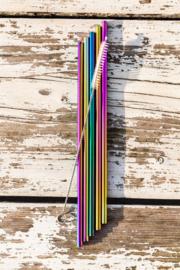 Set 5 regenboogrietjes recht + rietjesborstel