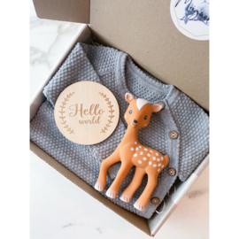 Noah Gift Box