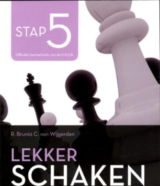Lekker schaken stap 5 strategie/koningsaanval/eindspel