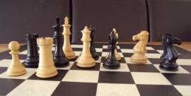 Royal Knight - Het Koninklijke Paard met Parijs 60 bord