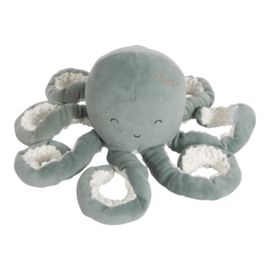 LD4805 Octopus mint