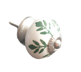 Kastknopje blad - groen/creme