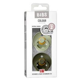 Bibs duo speen 2 groen