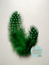 parelhoen veren 'groen', setje van 10 stuks