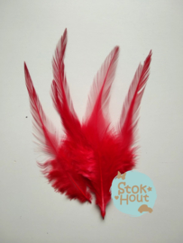 fazantveren 'rood', setje van 10 stuks