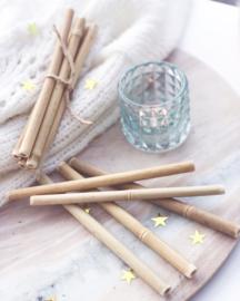 Herbruikbare Bamboe Rietjes (5 stuks)