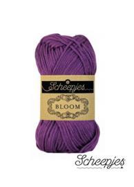 Scheepjes | Bloom | 403 Viola | 50 gram