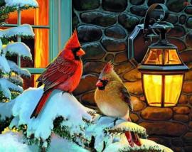 BNL painting Winter Vogels 50x60