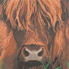 Diamond Painting Crystal Art Highland Cow  30 x 30
