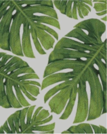 Diamond Painting Miss Coccinelle  Monstera Leaves