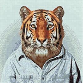 Wizardi Mr Tiger