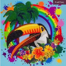 Diamond Painting Wenskaart Rainbow Toucan