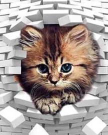 Diamond Painting Miss Coccinelle Brick Kitten 40x50