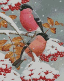 Diamond Painting Miss Coccinelle Birds in the Snow