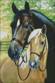 Diamond Painting Miss Coccinelle  Paarden