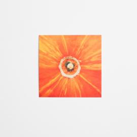 Pumpkin 10x10cm