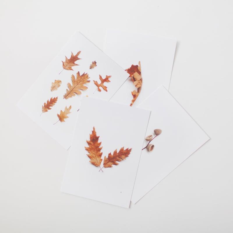 Kaartenset herfst set 2
