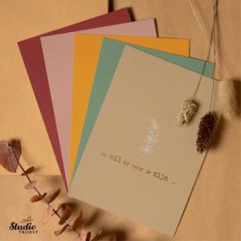 Pakket Febe 5 kaarten