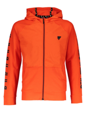Bellaire Boys Vest s3 146/152