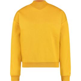Raizzed Women Sweater Nirije Earth Yellow XS