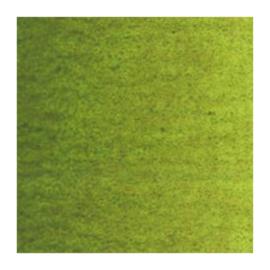 Van Gogh Olieverf Olijfgroen 620, serie 2 20ml