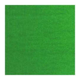 Van Gogh Olieverf  Perm. groen M 614, serie 1 20ml