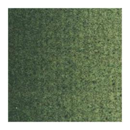 Van Gogh Olieverf Groene aarde 629, serie 1 20ml