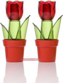 Herevin Set Salz- und Pfefferstreuer - Tulpen