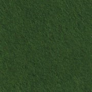CP041 vert gazon