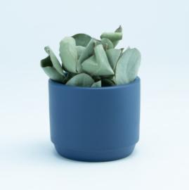 Keramiek marineblauw bloempotje