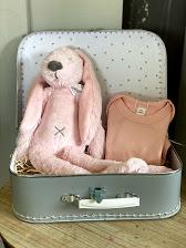 Koffertje rabbit Richie